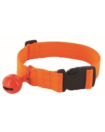 collier chien chasse