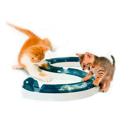 jouer pour chat