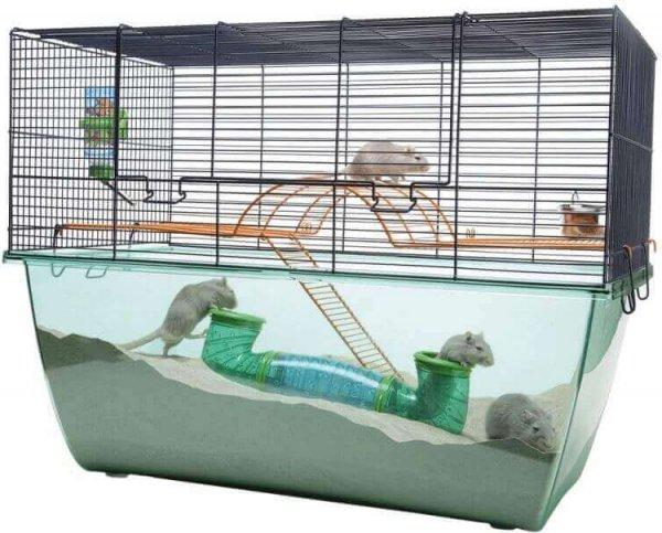 cage a gerbille