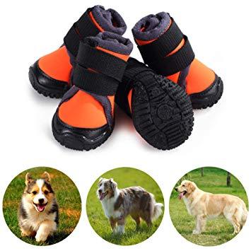 chausson pour chien
