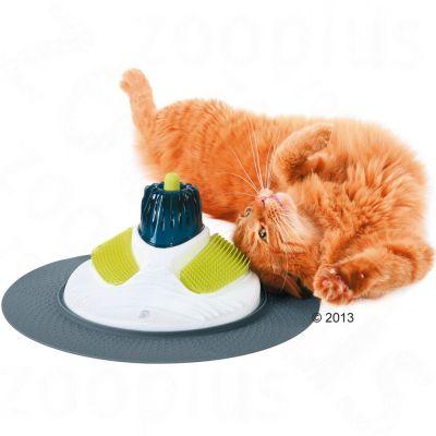 massage pour chat