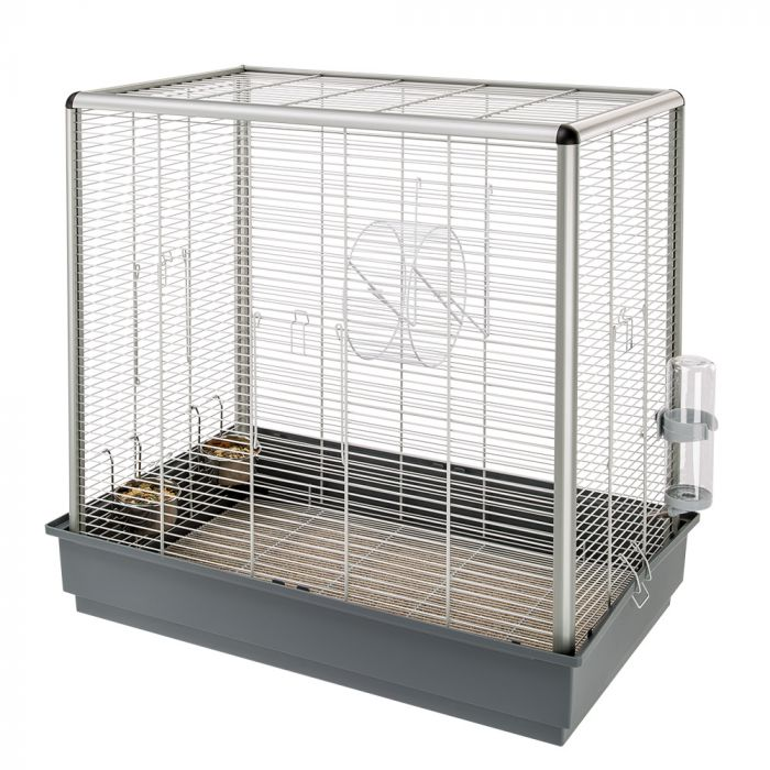 octodon cage