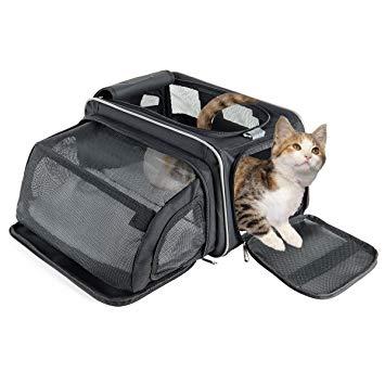 panier de transport pour chat