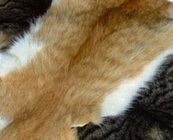 peau de chat