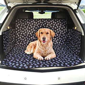 protection coffre chien