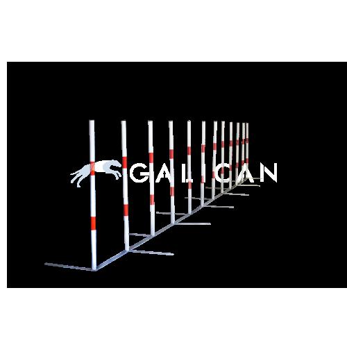 slalom agility
